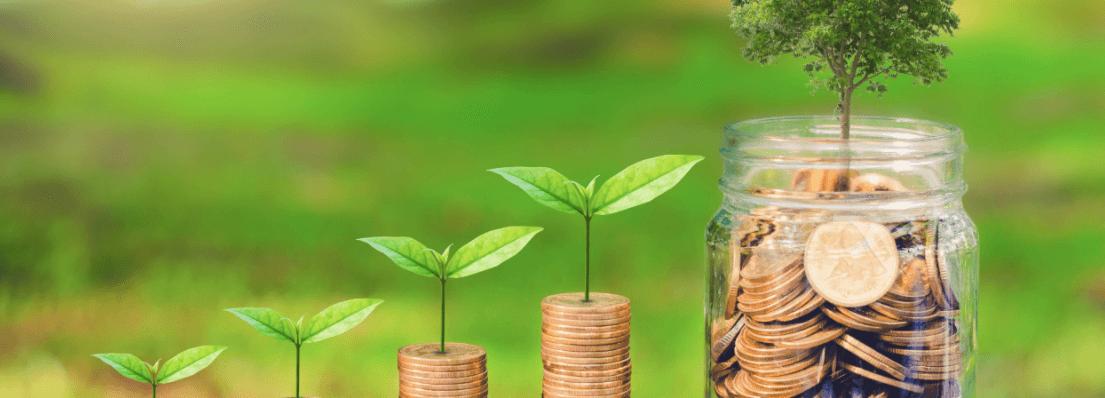 dicas como investir em fundos ESG e como funcionam fundos Environmental, Social and Corporate Governance